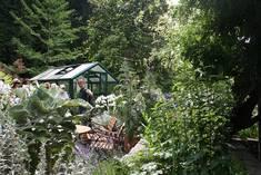 Fachführung durch Gärtner der Insel Mainau, Quelle: Friederike Scharpf, Kreisfachberaterin für Gartenkultur und Landespflege